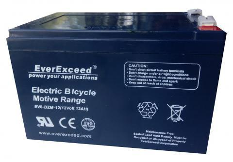 EverExceed DZM 12-12
