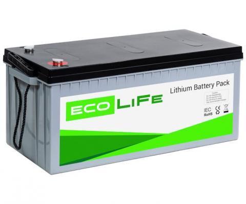LiFe EcoLiFe 12-200